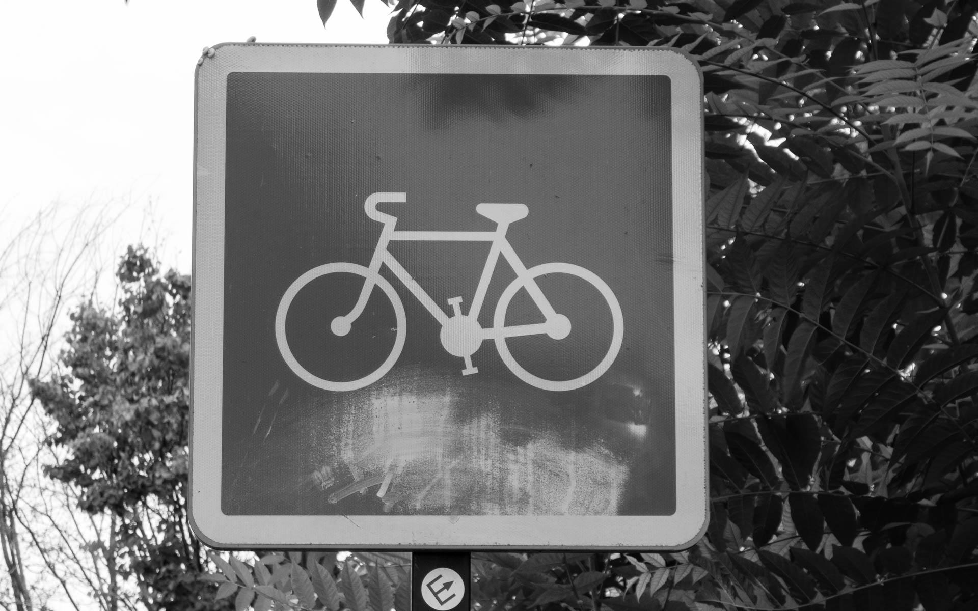 Fahrradschield in der Provence